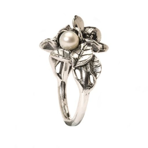 anello trollbeads, anello in argento, Trollbeads susa