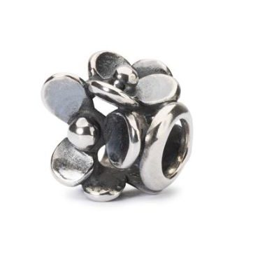 beads in argento, Trollbeads susa,riva del mare susa